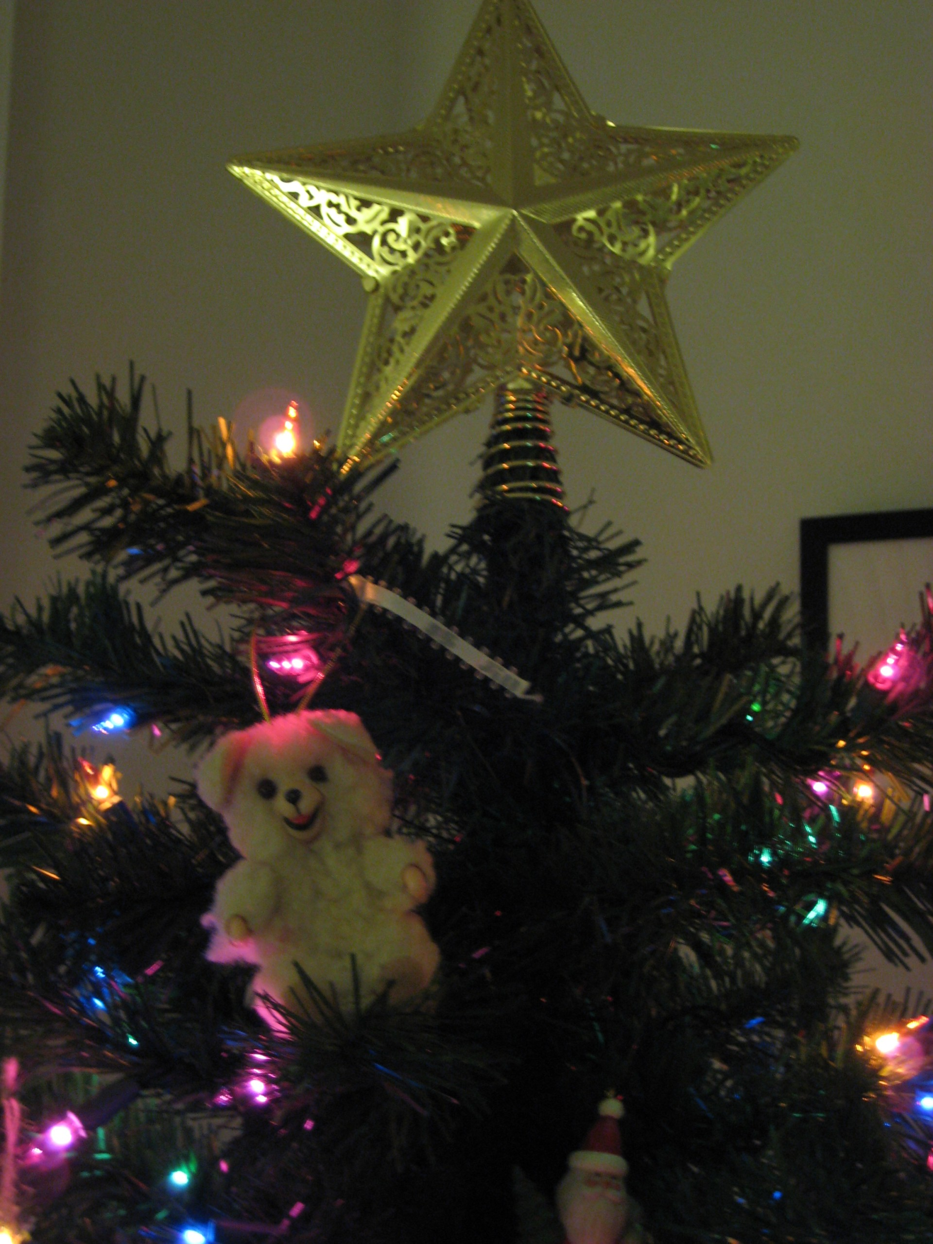 Snuggle Bear at the top of the tree, where he belongs