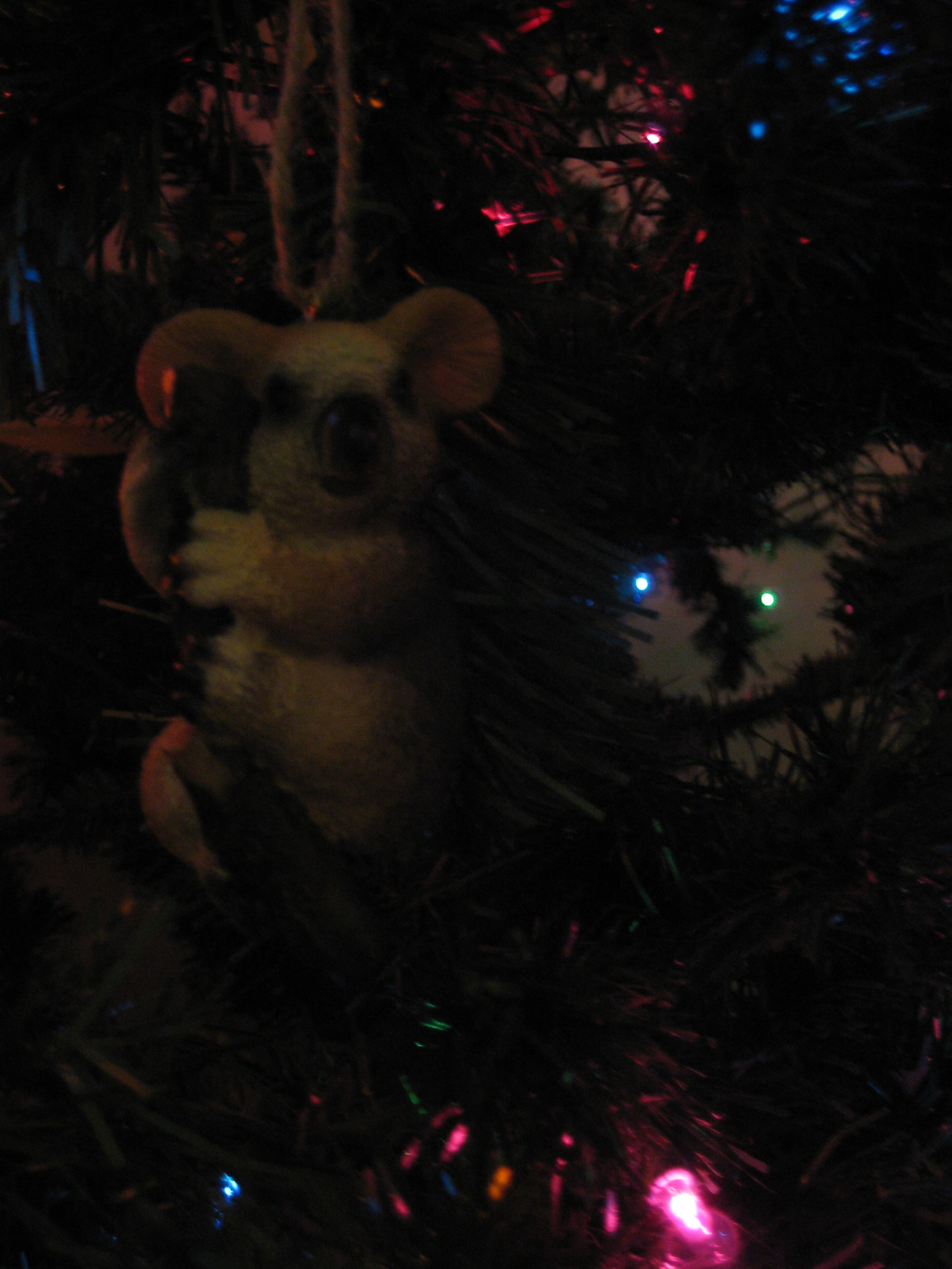Coleman's favorite ornament!